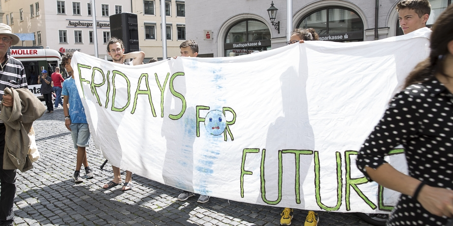 Fridays for Future ...